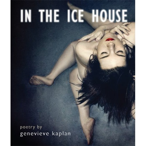 Image result for In the ice house by: Genevieve Kaplan